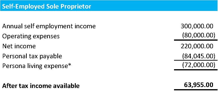 Example of Self-Employed Sole Proprietor Tax Savings